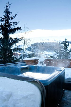 Chalet Les Sorbiers :                   View from hot tub