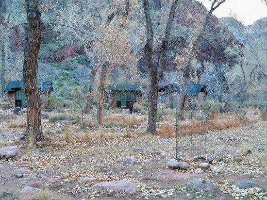 Phantom Ranch:                   Cabins