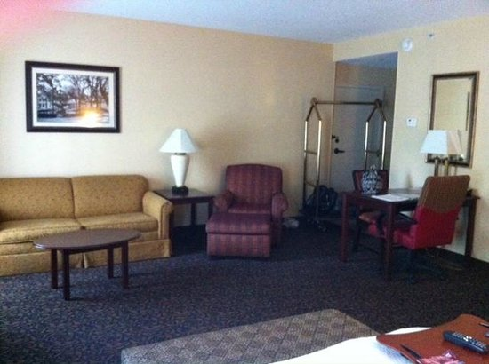 Hampton Inn & Suites Mobile/Downtown:                                     Sofa Sleeper and Entrance