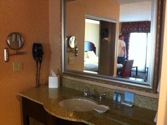 Hampton Inn & Suites Mobile/Downtown :                                     Bathroom Sink