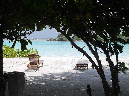 Paradise Island Resort & Spa:                   Vue de la terrasse du bungalow