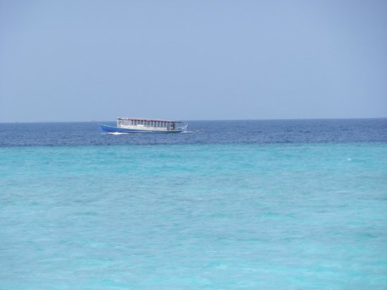 Paradise Island Resort & Spa:                   Dhoni (bateau local)