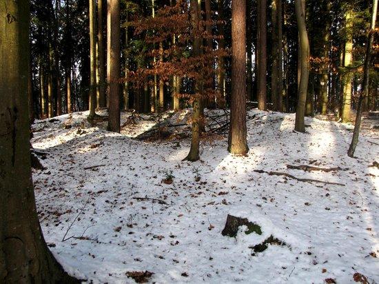 Ottenbronn, Németország: Ein vor langer Zeit geöffneter Grabhügel