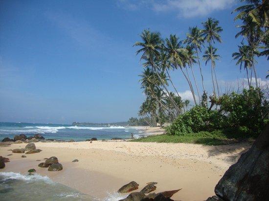 Beach Grove Villas:                   Great views