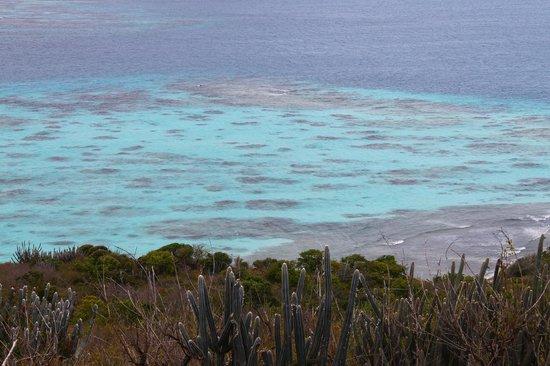 Culebrita Island:                   Vista desde el helipuerto