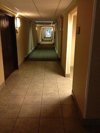 Wyndham Garden Lafayette:                   Dirty hallway