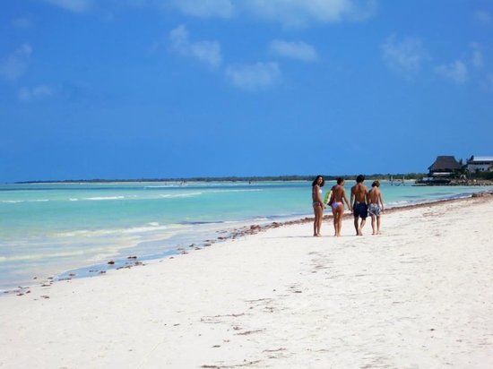 Holbox Hotel Casa las Tortugas - Petit Beach Hotel & Spa:                   Holbox da non dimenticare