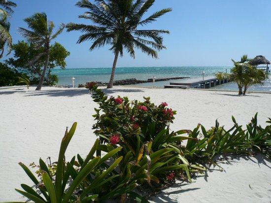 Caribe Island Condos : Private Beach