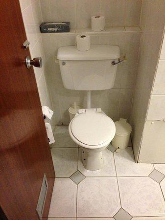 Apollo Hotel:                   70s style toilet