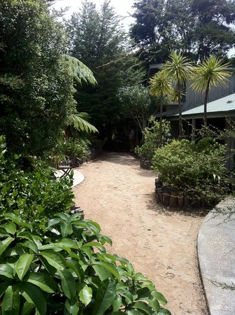 Peppers Awaroa Lodge:                                     Tidy grounds