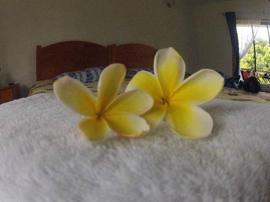 Kahina Lodge: Flores de adorno en las toallas