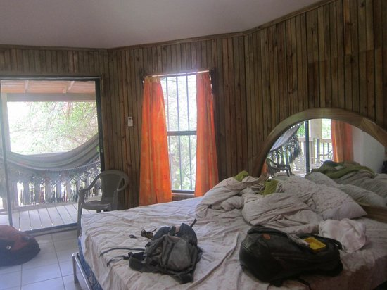 Coconut Tree, West End:                   Bedroom