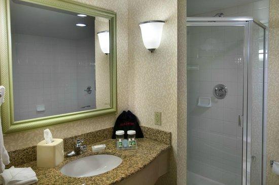 Hilton Garden Inn Detroit Downtown: Guest Bathroom