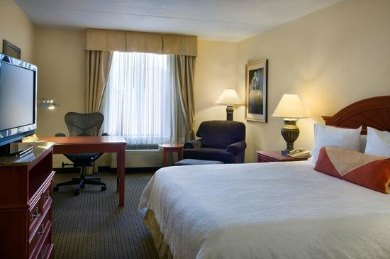 Hilton Garden Inn Detroit Downtown: King Guestroom