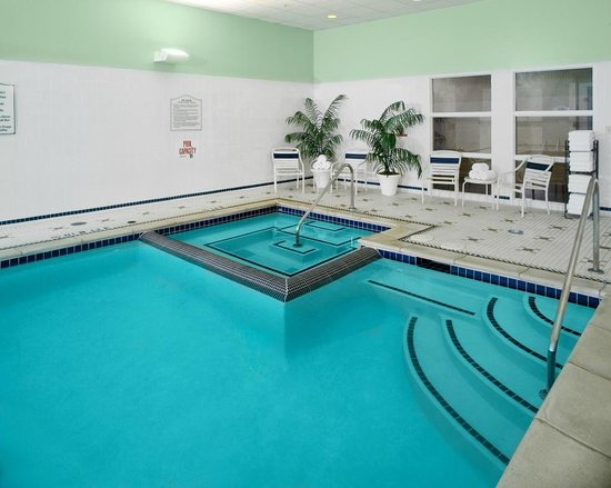 Hilton Garden Inn Detroit Downtown: Pool