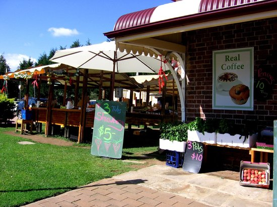 FoodPath Culinary Tours:                                     local food produce store