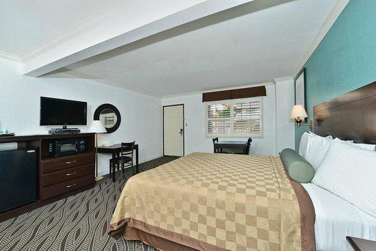Saharan Motor Hotel: King Suite