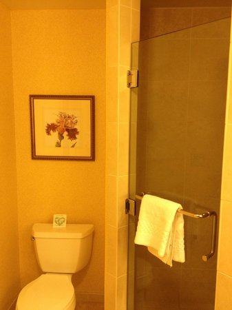 Renaissance Montgomery Hotel & Spa at the Convention Center: Walk-in shower