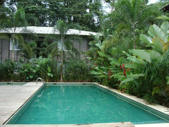 Le Cameleon Boutique Hotel:                   vista da piscina