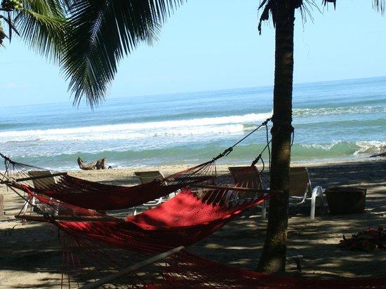 Le Cameleon Boutique Hotel:                   espaço relax em frente a praia