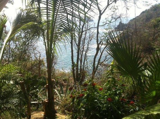 Casa Sol Zipolite:                   L'océan, vue du balcon de notre chambre                 