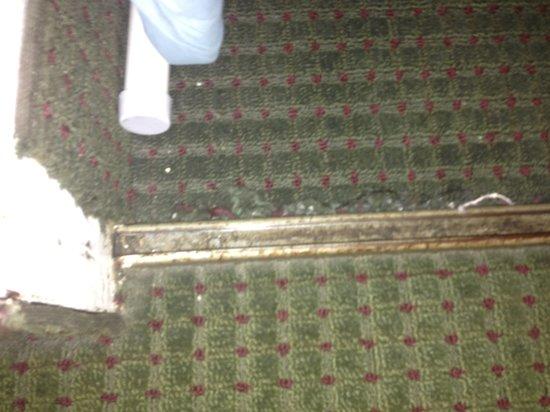 Quality Inn & Suites : Door to closet... Room 140