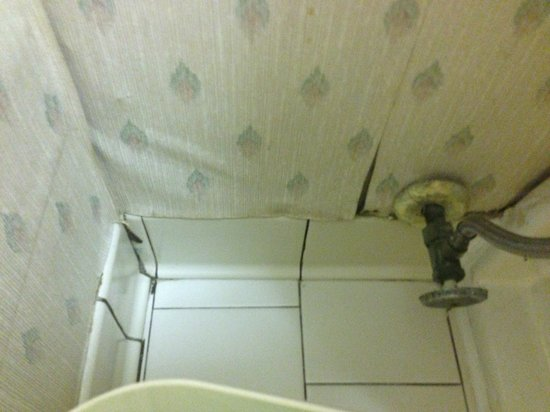 Quality Inn & Suites: Tile and wallpaper