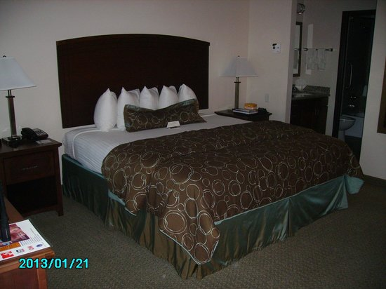 Staybridge Suites Plano - Richardson Area :                   La cama... gigante