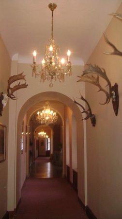 Hotel Zamek Stirin: Man's man hallway yet with lovely chandeliers.