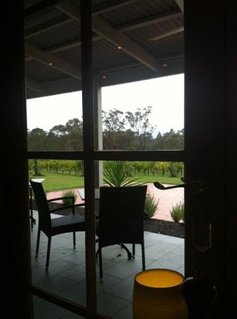 Spicers Vineyards Estate: view of vineyard from restaurant botanica