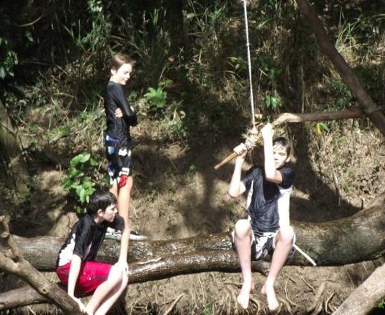 Borumba Deer Park:                   1 of 3 great Rope Swings
