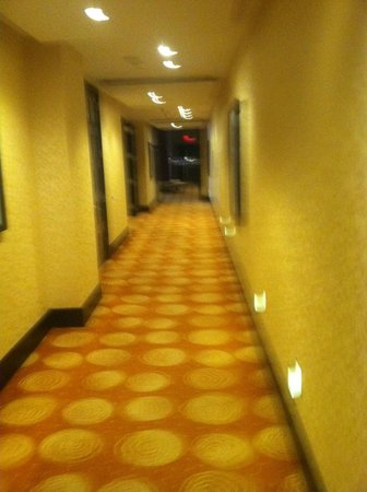 InterContinental Boston:                                     welcoming corridor