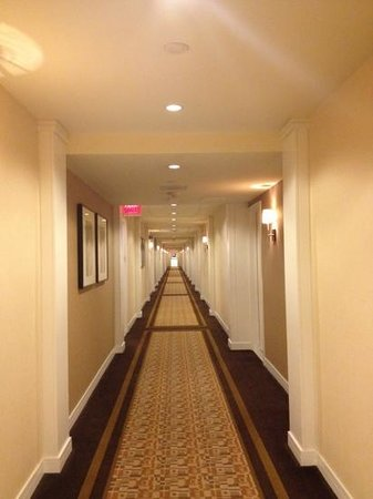New York Hilton Midtown: A long row of rooms
