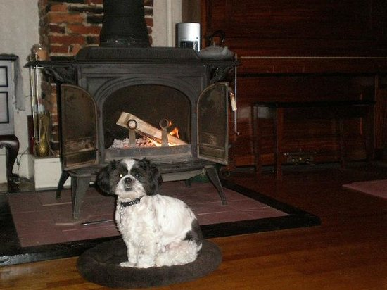 Old Red Inn & Cottages: Rudy by the fire place