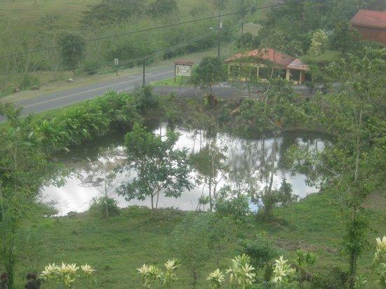 Arenal Palace:                   Laguito