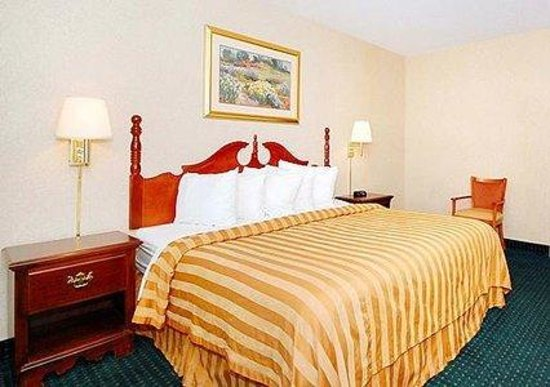 Quality Inn Philadelphia Airport: Guest Room (OpenTravel Alliance - Guest room)
