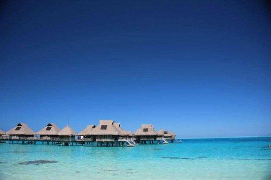 Conrad Bora Bora Nui:                                     View from the pool