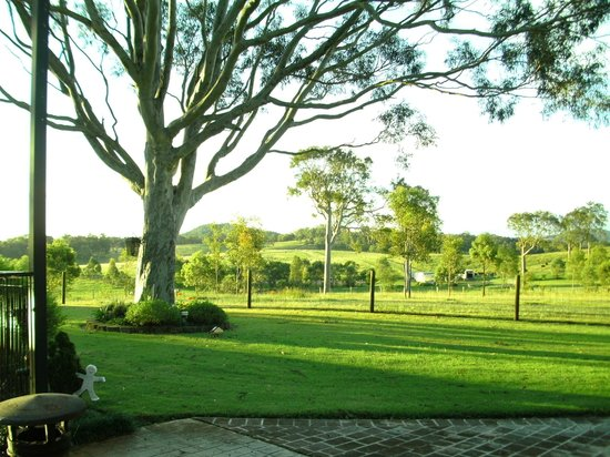 Bella Wind Bed and Breakfast: Our view