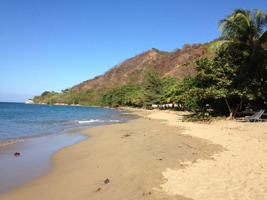 Rincon Beach Resort:                   Resort Beach to the North toward Rincon