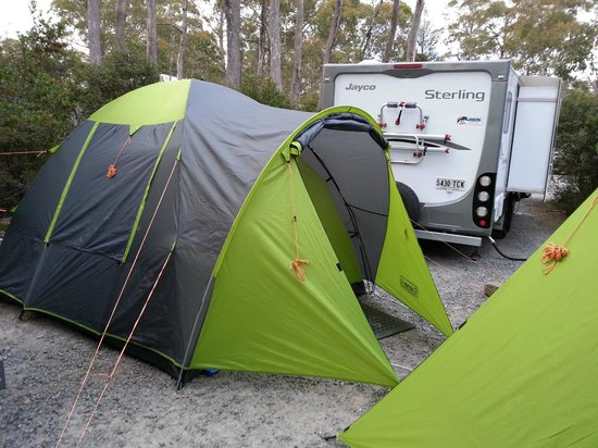 Discovery Parks - Cradle Mountain:                   A Caravan parked very closely to the tents