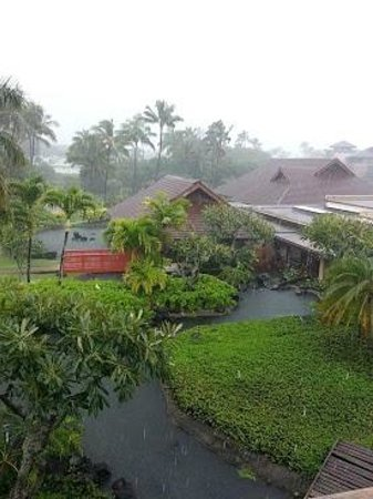 Sheraton Kauai Resort:                   Ponds from the balcony- rainy day