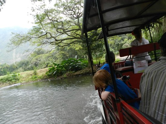 Waipi'o Valley Wagon Tours: Crossing A Stream
