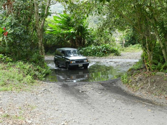 Waipi'o Valley Wagon Tours: Waiting For A local To Clear The Stream