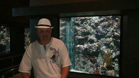 Phuket Panwa Beachfront Resort:                   аквариум недалеко от отеля