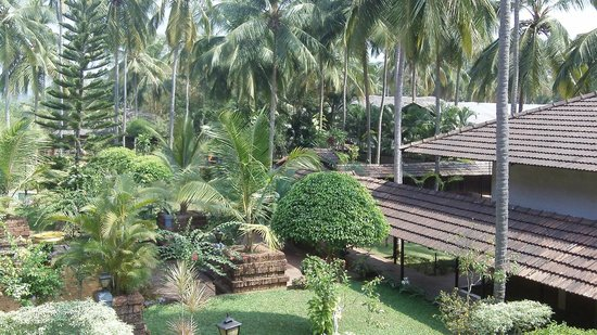 The Raviz Resort & Spa, Kadavu: Hotel area