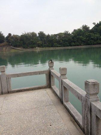 Chengcing Lake :                   魔除けの九曲橋に小鳥のカップルが