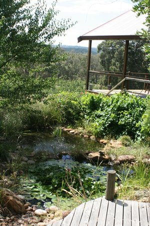Crabapple Lane Bed and Breakfast:                   One can sit near this pond and enjoy nature and a conversation.