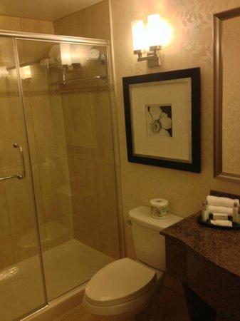 Hilton Garden Inn Montreal Centre-ville:                   Bathroom