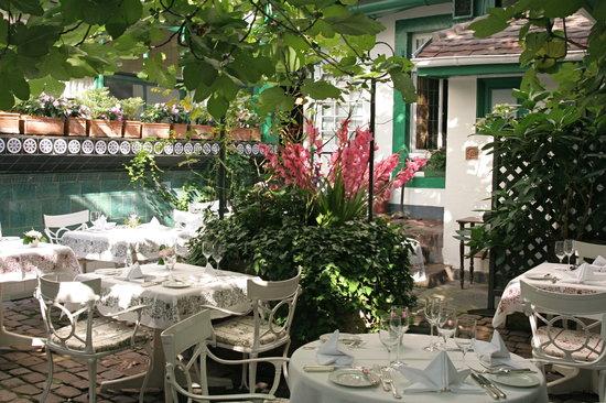 Oberlaender Weinstube: Garten