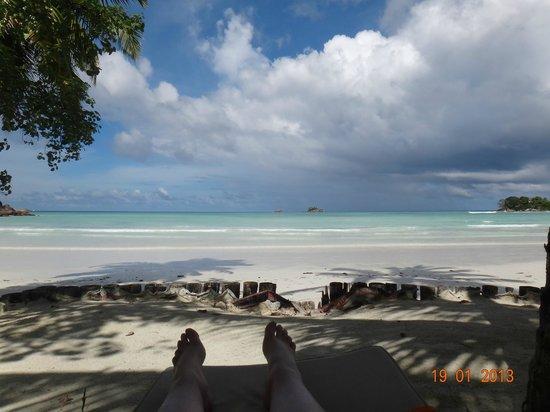 Paradise Sun:                   On the beach chair